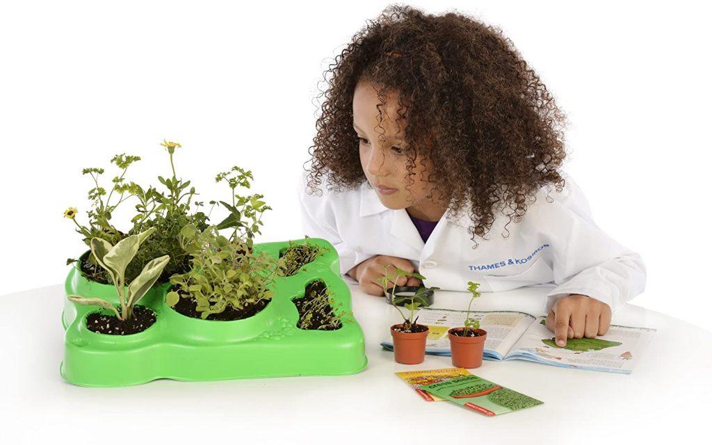 Kid observing plants